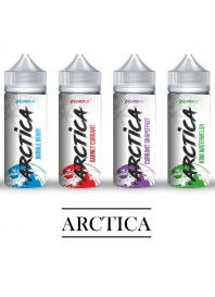 Arctica 120 мл